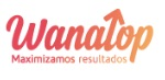 05 posicionamiento web - wana top-opt