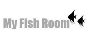 My-Fish-Room
